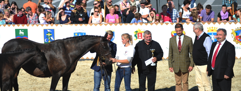 MSLT Csikó championátus 2014